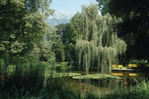 (c) Ibk Innsbruck
